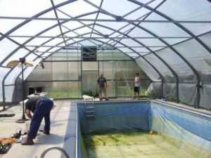 Как сделать бассейн в теплице из поликарбоната